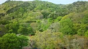 花巻温泉「愛隣館」お部屋からの景色
