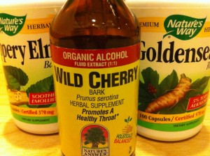 herbal supplements for treating bronchitis