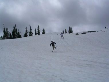 Mt. Rainier (231)