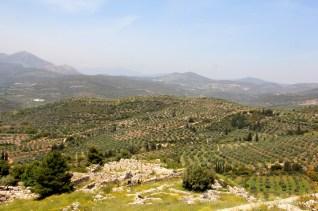 Mycenae (4)