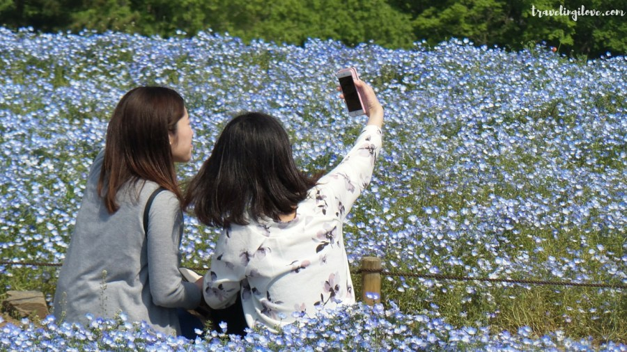Hitachi Seaside Selfie Gallery (7)