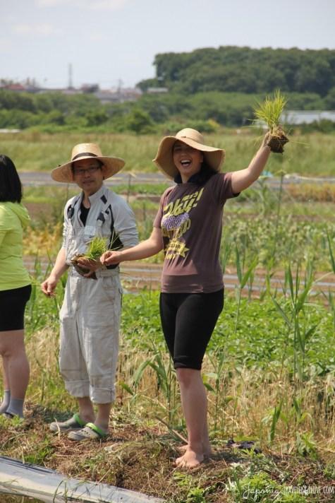 Inaka rice planting
