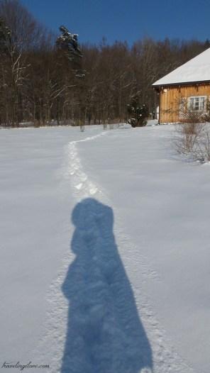 Skansen Sanok winter (5)