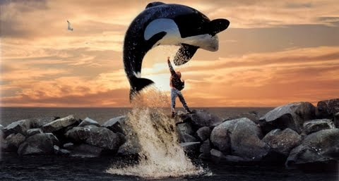 Free Willy movie, whale jumping to freedom