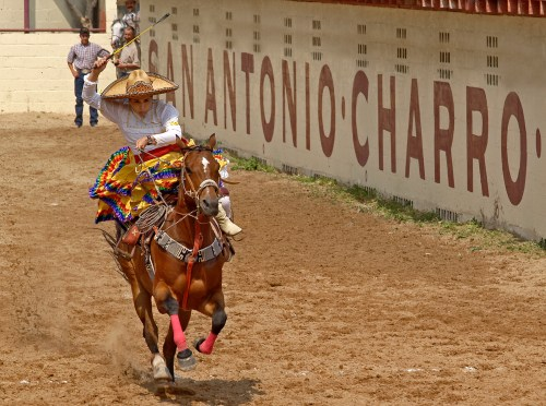 Charreada (Photo: Al Rendon/SACVB)