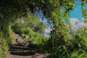 Machu Picchu steps 1