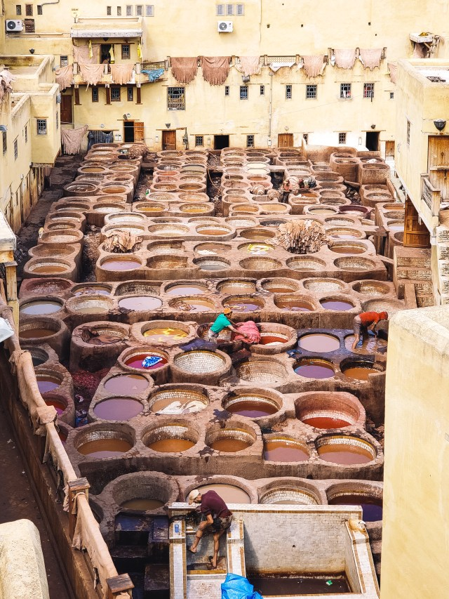 Fes-tannery-close-up