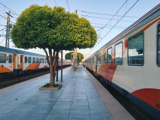 Train-Orange-2