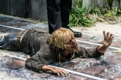 Walking Dead Con Display