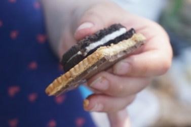 מעדנים נבחרים: עוגיות בתוספת עוגיות