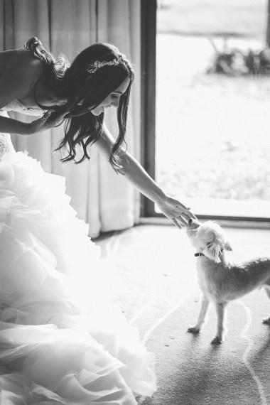 Mommy's Wedding Day