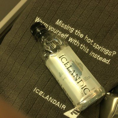 The Icelandair Experience