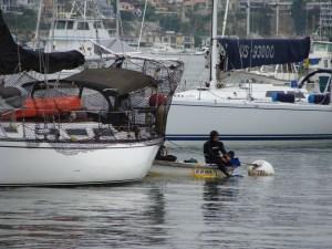 scuba diver Newport Bay