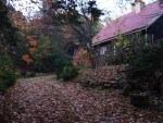 Pennsylvania house late autumn leaves