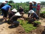 working field layering garden farm