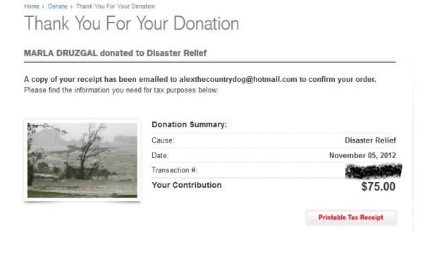contest charity blog donation Hurricane Sandy