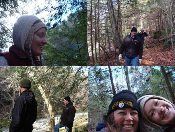 Birch bark smell wintergreen