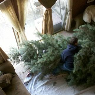 Christmas Tree setup 18 feet Griswold National Lampoon Christmas Vacation