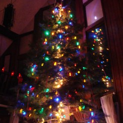 Christmas Tree setup 18 feet Griswold National Lampoon Christmas Vacation Druzgal
