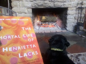 contest the immortal life of henrietta lacks hela cells signed hardcover bestseller HeLa cells
