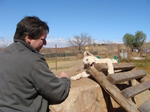 South Africa expat life day trips Pretoria