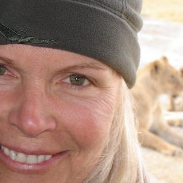 Laurie Marker Cheetah Conseration guest blogging Africa travel