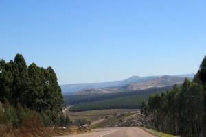 expat life Pretoria Africal travel