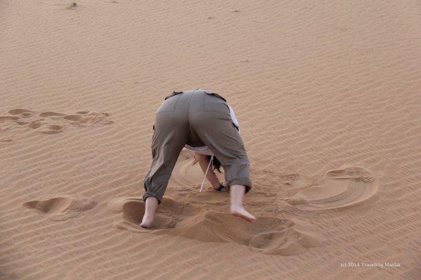 travel Dubai Arabian Desert