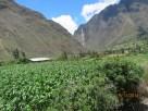Inca rail views7