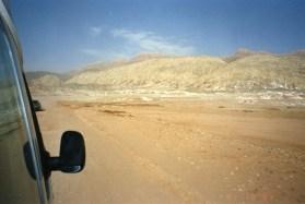 Xinjiang007