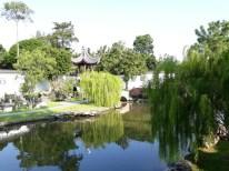 Chinese Garden - Bonsai garden19