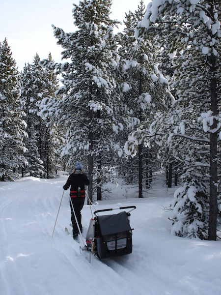 Cross- country skiing at the Silvercrest Ski Trails near Neihart.