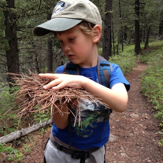 Boy on the trail, family hike