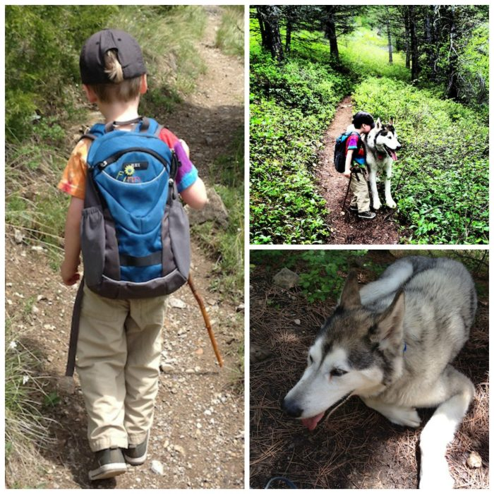 Family hike on Storm Castle Trail, Gallatin Mountains, Montana