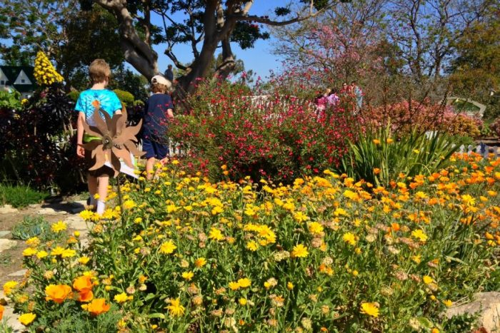 Anders and Finn walk past blooming flowers at the South Coast Botanic Garden on the Palos Verdes Peninsula