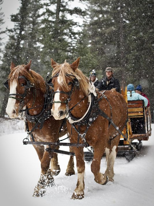 Sleigh ride dinner at Lone Mountain Ranch