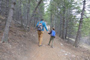 Hiking and biking trails in Helena Montana.