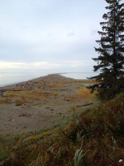 Dungeness National Wildlife Area spit is five miles long. Dungeness Recreation Area Campground Dungeness County Park Places to camp near Olympic National Park Washington campgrounds