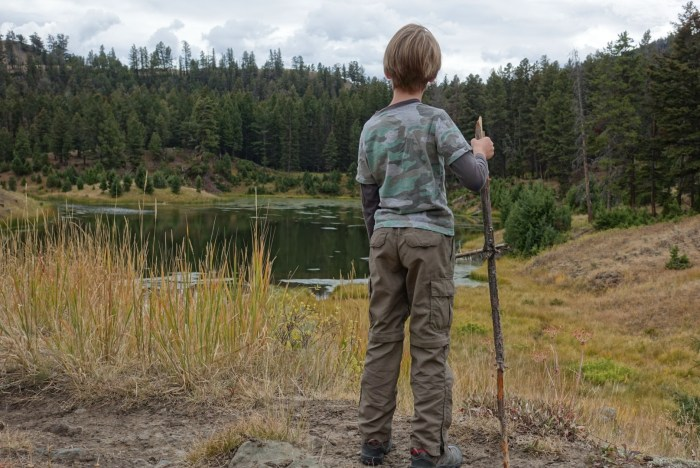 Beaver Pond Loop Trail hike in Yellowstone National Park