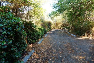 Washington campgrounds Campground review Best sites at Dungeness Campground