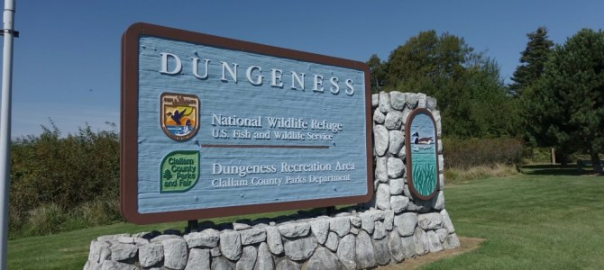 Dungeness Recreation Area Campground Review