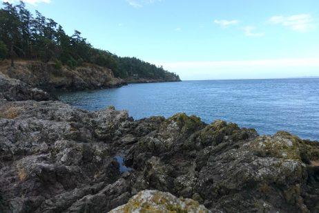 Where to camp on San Juan Island San Juan Island campground review
