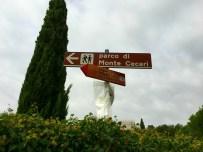 Parca di Monte Ceceri