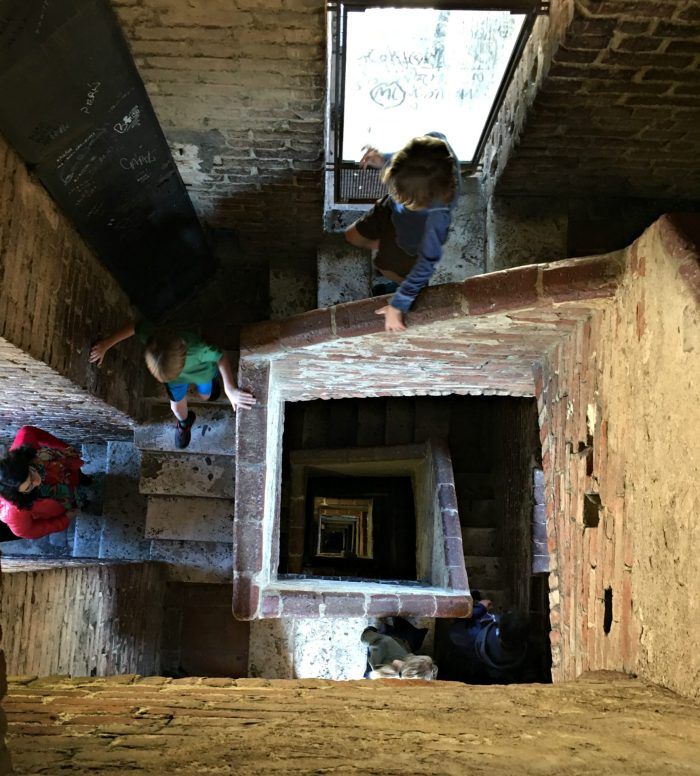 climb torre de mangia while exploring siena