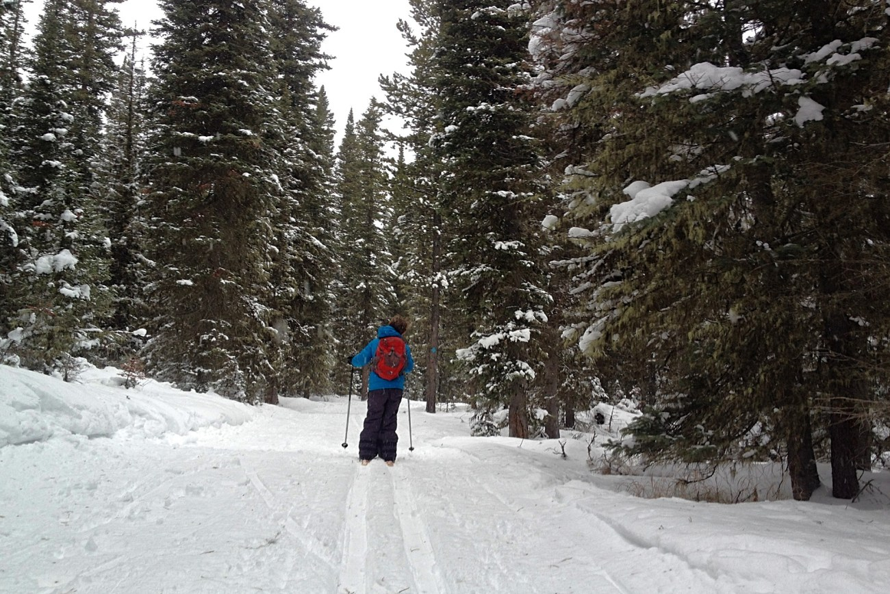 Things to do in winter in Montana