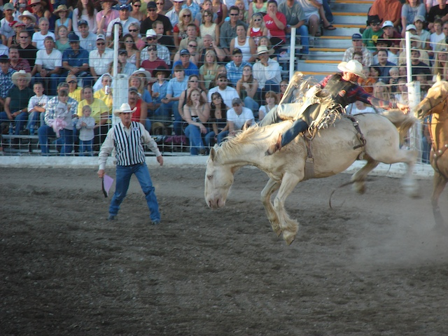 Buckin' Bronco at the Livingston Roundup Rodeo