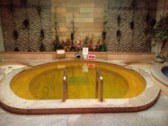 hot ginseng pool.. yes it is hot!