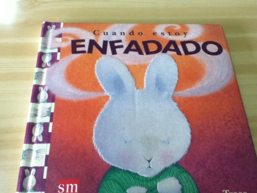 Book I used to study Spanish