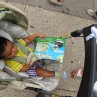Child Free Zones and Other Malarkey