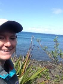 Ocean from Tiritiri Matangi